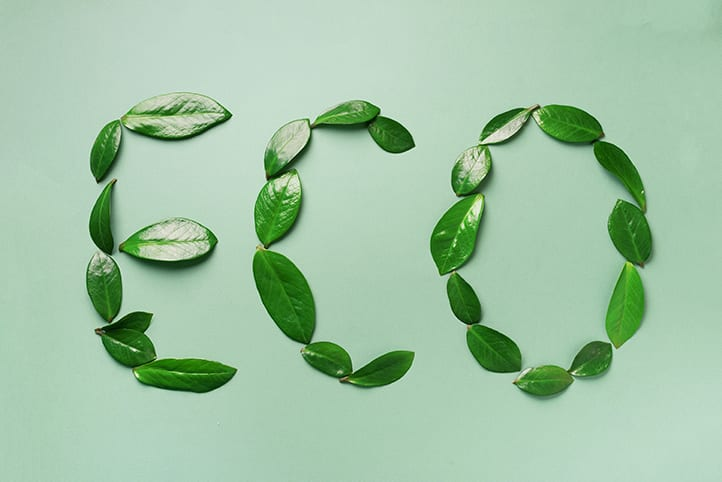 Word Eco made of leaves on green background. Top view. Flat lay. Ecology, eco friendly planet and sustainable environment concept. Think green